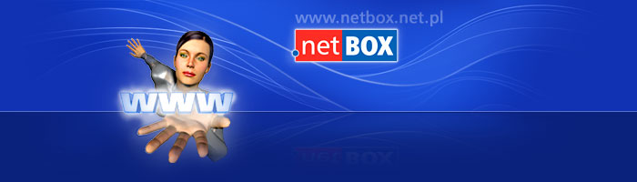 Systemy internetowe -  © netBox